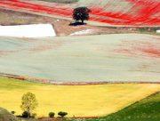 Geometrias agrarias 3