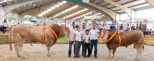 """""""Ión"""" y """"Fisca"""" Campeones del X Concurso Nacional de Raza Blonda de Aquitania. Salamaq17"""