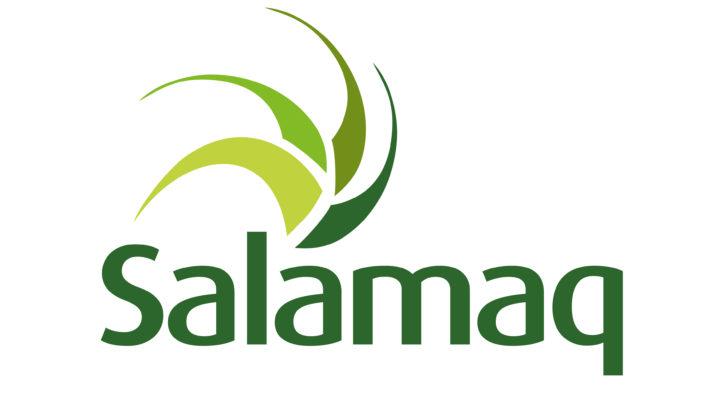 LOGO-salamaq-COLOR